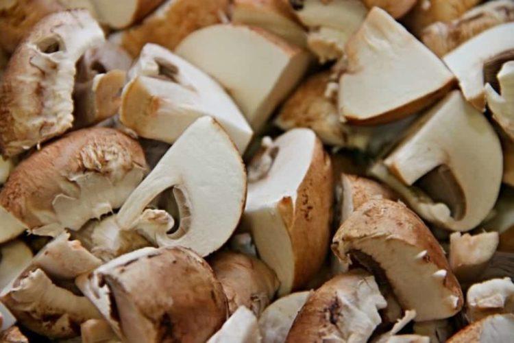 Can You Freeze Mushroom Pate