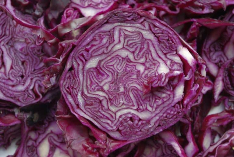 Can You Freeze Red Cabbage